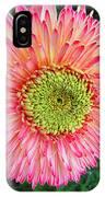 Bellisima IPhone Case