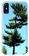 Beneath This Tree Lies Robert Edwin Peary IPhone Case