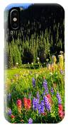 Berkeley Park IPhone Case