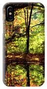 Bernharts Dam Fall 006 IPhone Case