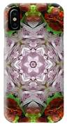 Berry Kaleidoscope IPhone Case