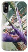 Betty's Bird - Bird Of Paradise IPhone Case