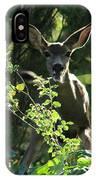 Beverly Hills Deer IPhone Case