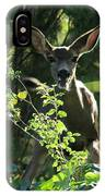 Beverly Hills Deer IPhone Case