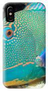 Bicolor Parrotfish IPhone Case