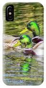 Bidwell Ducks In Fall IPhone Case