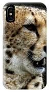 Big Cats 101 IPhone Case