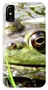 Big Eyed Frog In A Marsh IPhone Case