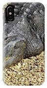 Big Gator IPhone Case