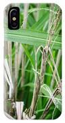 Big Grass Blade IPhone Case