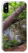 Big Rock IPhone Case