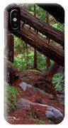 Big Sur Redwood Canyon IPhone Case