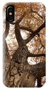 Big Tree IPhone Case