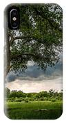 Big Tree - Tall Cottonwood And Storm In Texas Panhandle IPhone Case