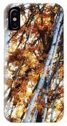 Birch And Oak And Sun IPhone Case