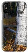 Birch Autumn 3 IPhone Case