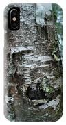 Birch Bark 3 IPhone Case