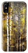 Birch Bark And Trees Abstract IPhone Case