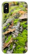 Birch Log IPhone Case