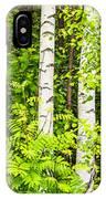 Birch Tree Panorama IPhone Case