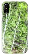 Birch Trees Abstract IPhone Case