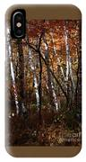 Birch Trees In The Fall IPhone X Case