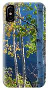 Birches On Lake Shore IPhone X Case