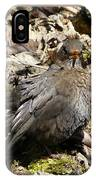 Bird In Hiding IPhone Case