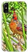 Bird In The Brush H D R IPhone Case