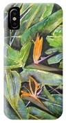 Bird Of Paradise 2 IPhone Case