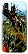 Bird Of Paradise By The Sea IPhone Case