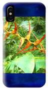 Bird Of Paradise Quepos Costa Rica IPhone Case