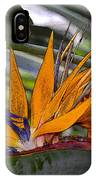 Bird Of Paradise Work Number Three IPhone Case
