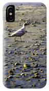 Bird On Beach IPhone Case
