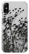 Bird Tree IPhone Case