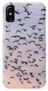 Birds A Flock Of Seagulls IPhone Case