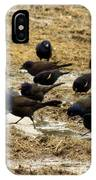 Birds In The Mud IPhone Case