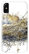 Bird's Nest Watercolor Painting IPhone Case