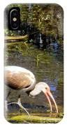 Birds Of The Everglades IPhone Case