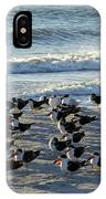 Birds On The Beach IPhone Case