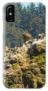 Birds On The Rocks IPhone Case