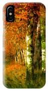Birken Am Moorgraben 1896 IPhone Case