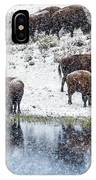 Bison Snow Reflecton IPhone Case