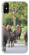 Bison Traffic Jam IPhone Case