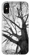 Black And White Autumn Tree  IPhone Case