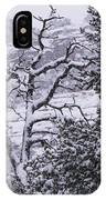 Black And White Day IPhone Case