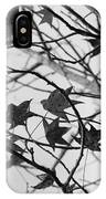 Black And White Leaves IPhone Case