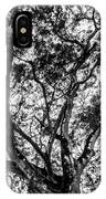 Black And White Tree 2 IPhone Case