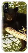 Black Bear Cub Resting On A Tree Branch IPhone Case