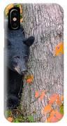 Black Bear In Tree IPhone Case